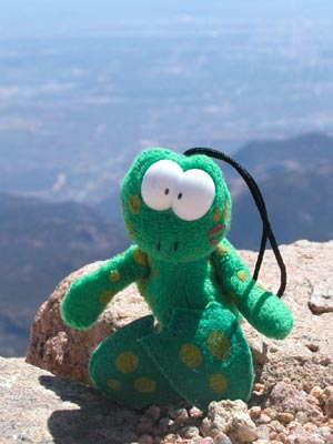 Phil Frog - Hanging out on the summit of 14,115' Pikes Peak in Colorado, USA